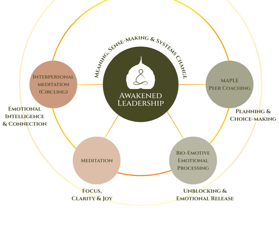 MAPLE Fundamentals Infographic_v3 Small